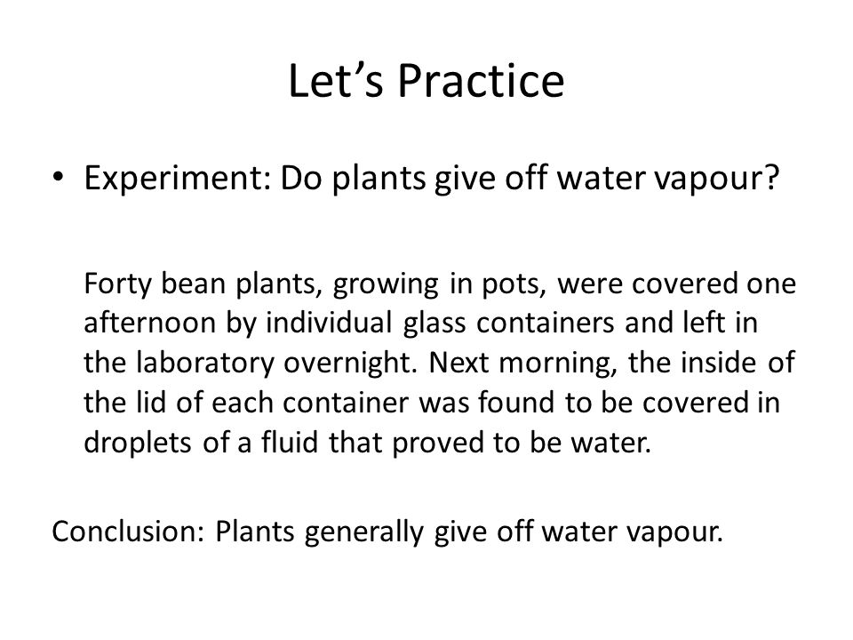 Let's Practice Experiment: Do plants give off water vapour