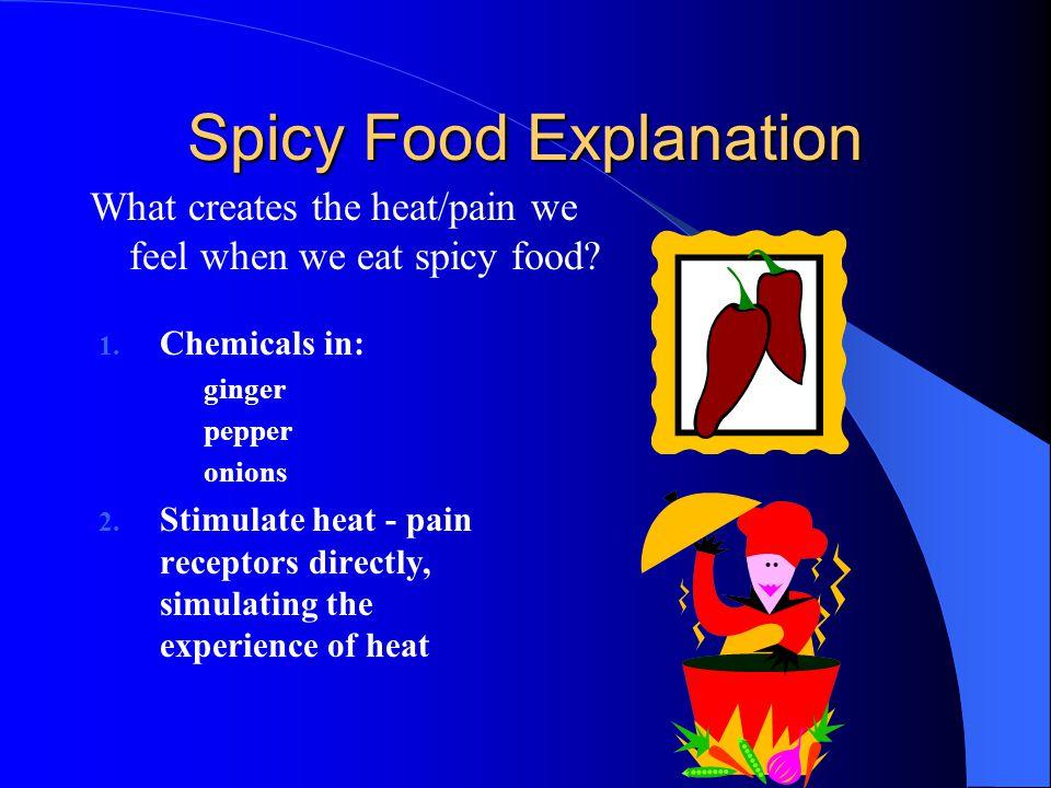 Spicy Food Explanation