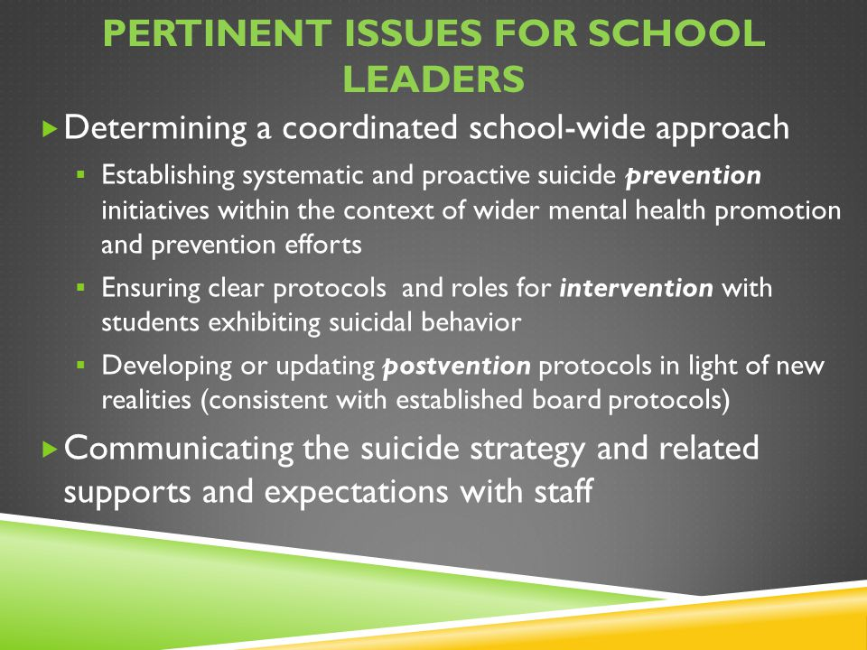 Pertinent issues for school leaders