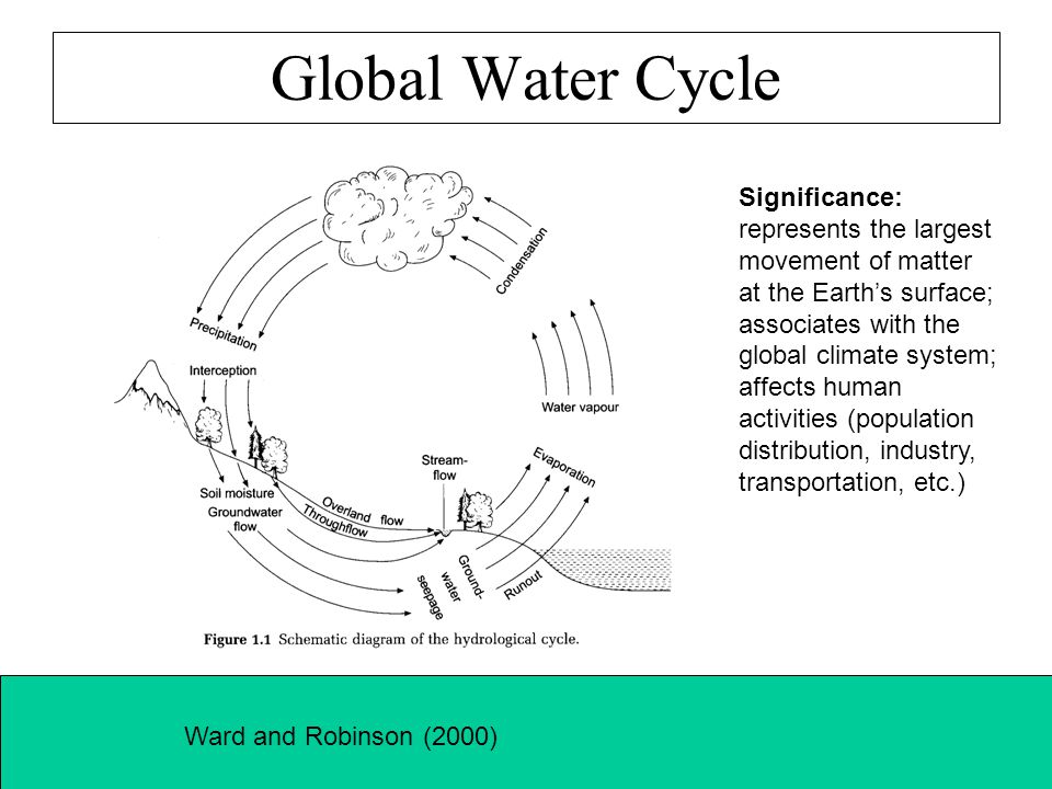 Global Water Cycle