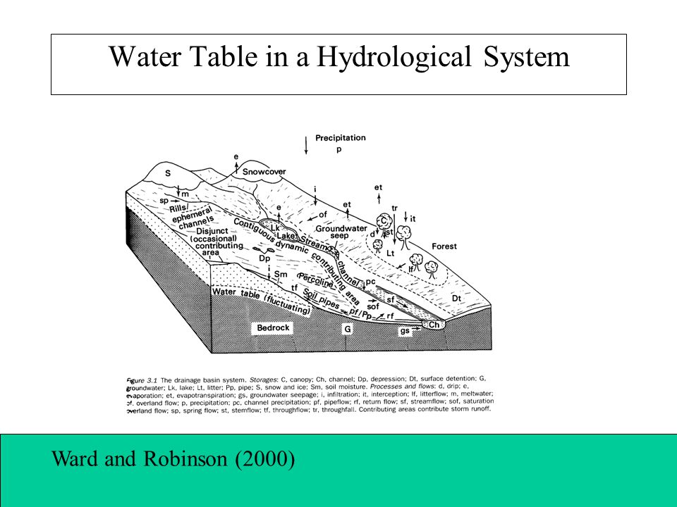 Water Table in a Hydrological System