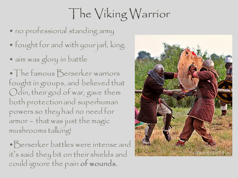 The Viking Warrior no professional standing army