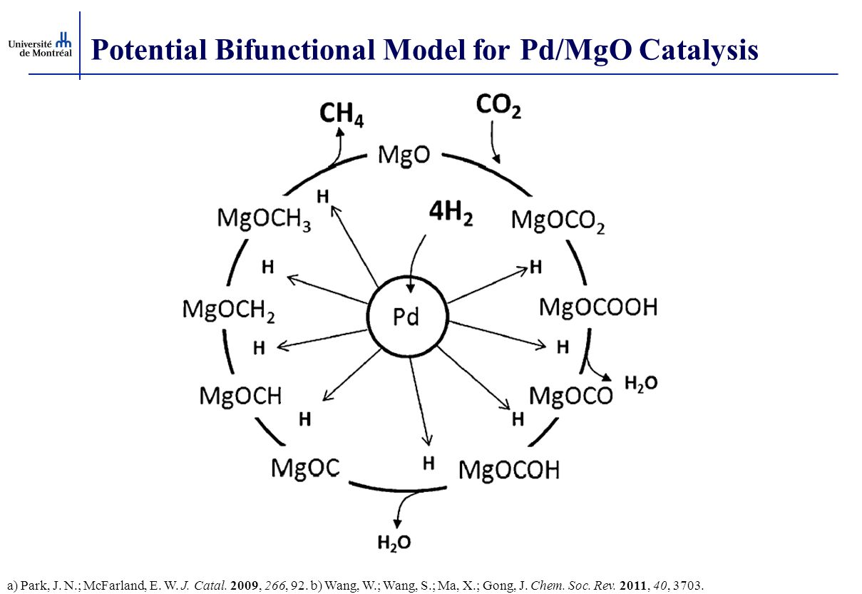 Potential Bifunctional Model for Pd/MgO Catalysis