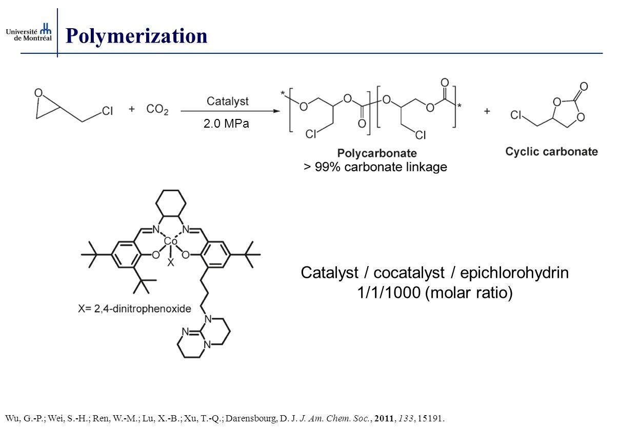 Catalyst / cocatalyst / epichlorohydrin