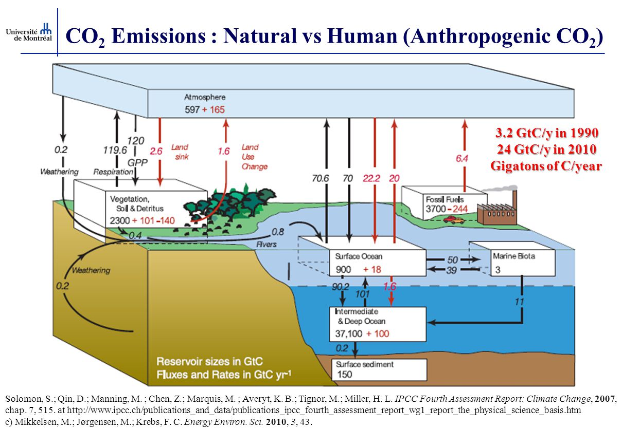 CO2 Emissions : Natural vs Human (Anthropogenic CO2)
