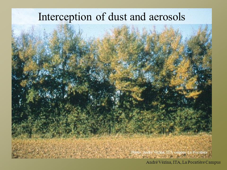 Interception of dust and aerosols