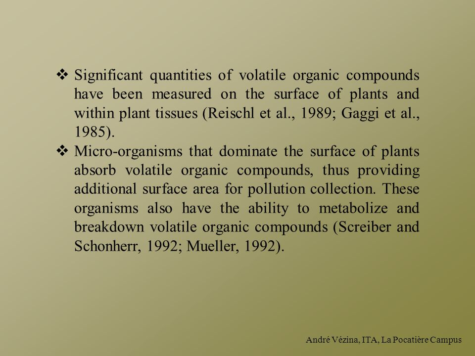 Significant quantities of volatile organic compounds have been measured on the surface of plants and within plant tissues (Reischl et al., 1989; Gaggi et al., 1985).