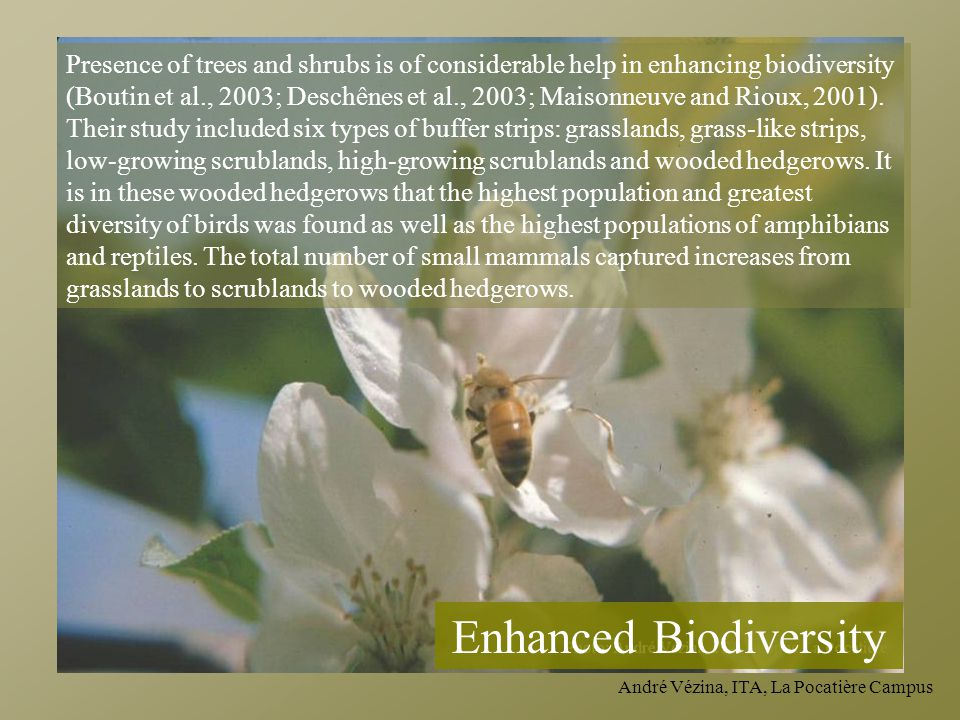 Enhanced Biodiversity
