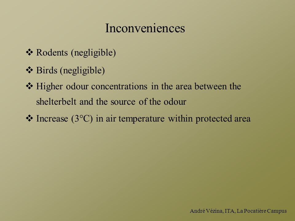 Inconveniences Rodents (negligible) Birds (negligible)