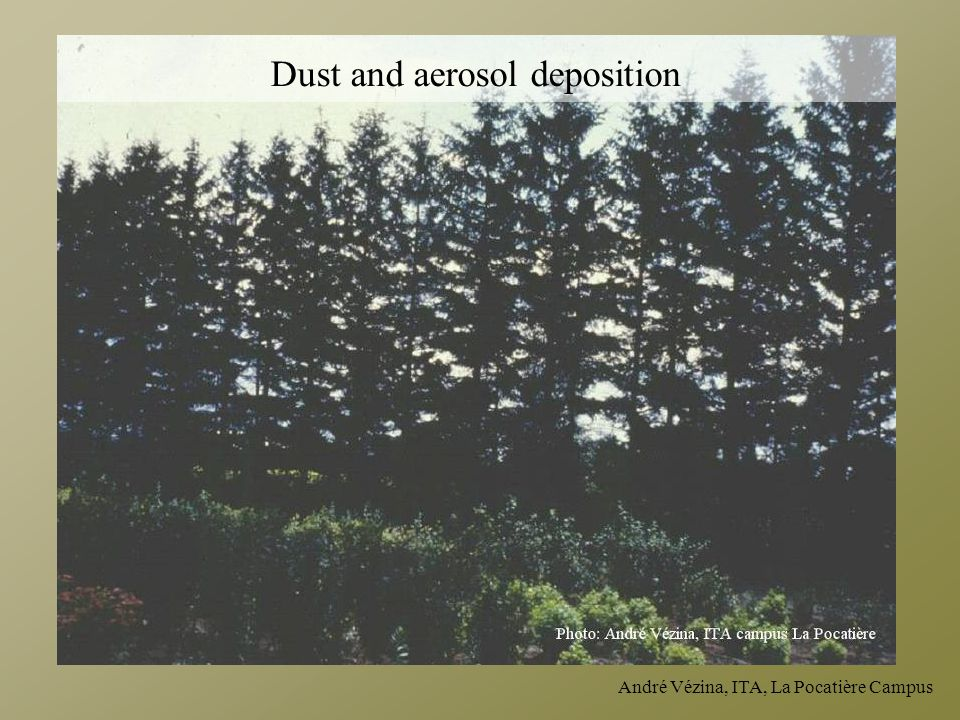 Dust and aerosol deposition