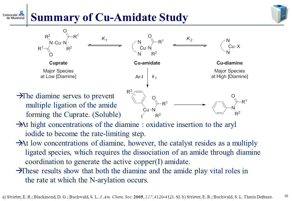 Summary of Cu-Amidate Study