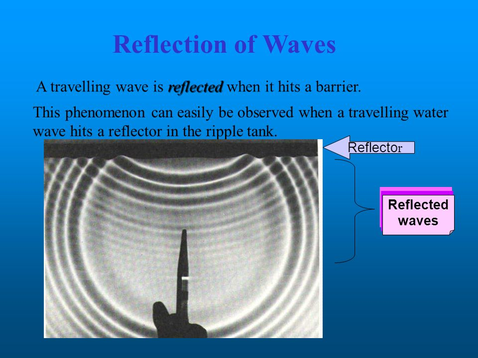 Reflection of Waves A travelling wave is reflected when it hits a barrier.