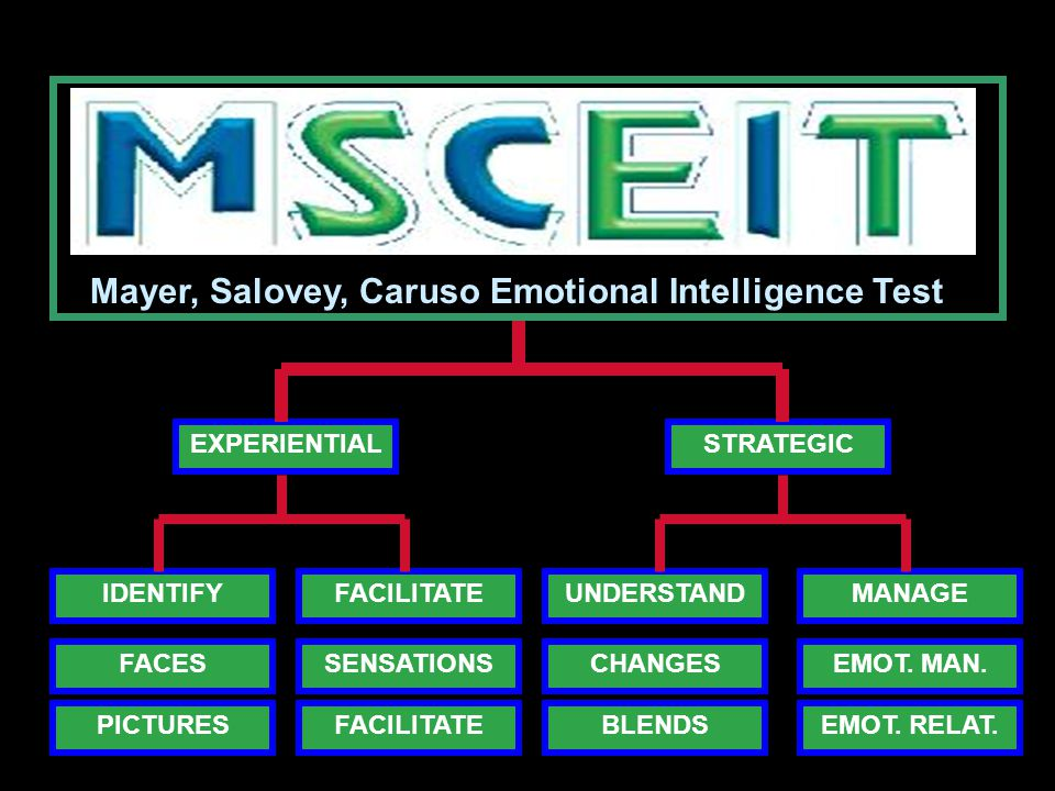 Mayer, Salovey, Caruso Emotional Intelligence Test