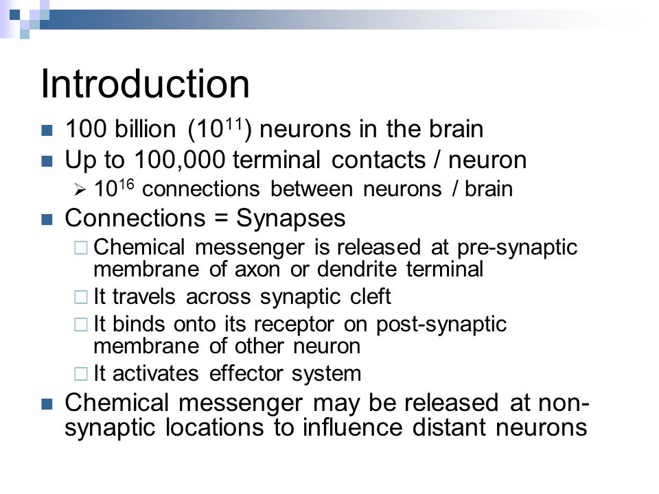 Introduction 100 billion (1011) neurons in the brain