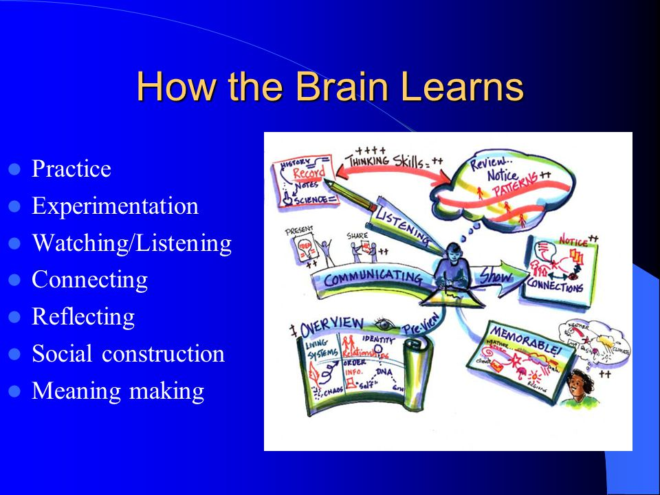 How the Brain Learns Practice Experimentation Watching/Listening