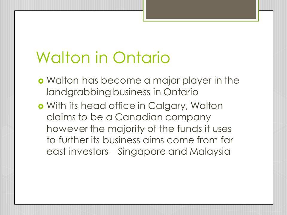 Walton in Ontario Walton has become a major player in the landgrabbing business in Ontario.