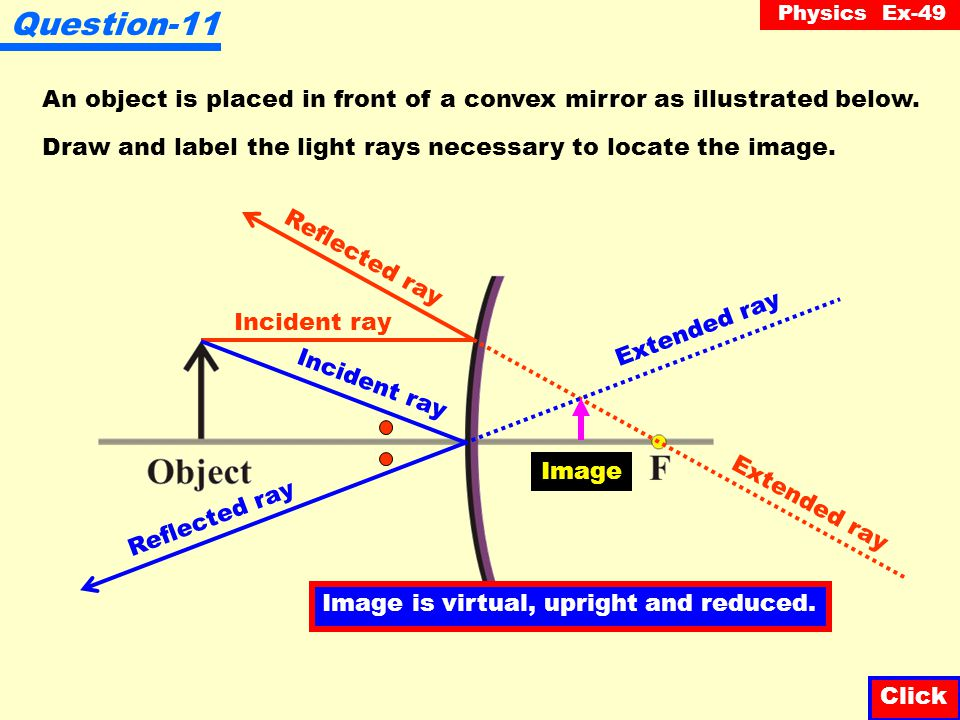Question-11 An object is placed in front of a convex mirror as illustrated below. Draw and label the light rays necessary to locate the image.