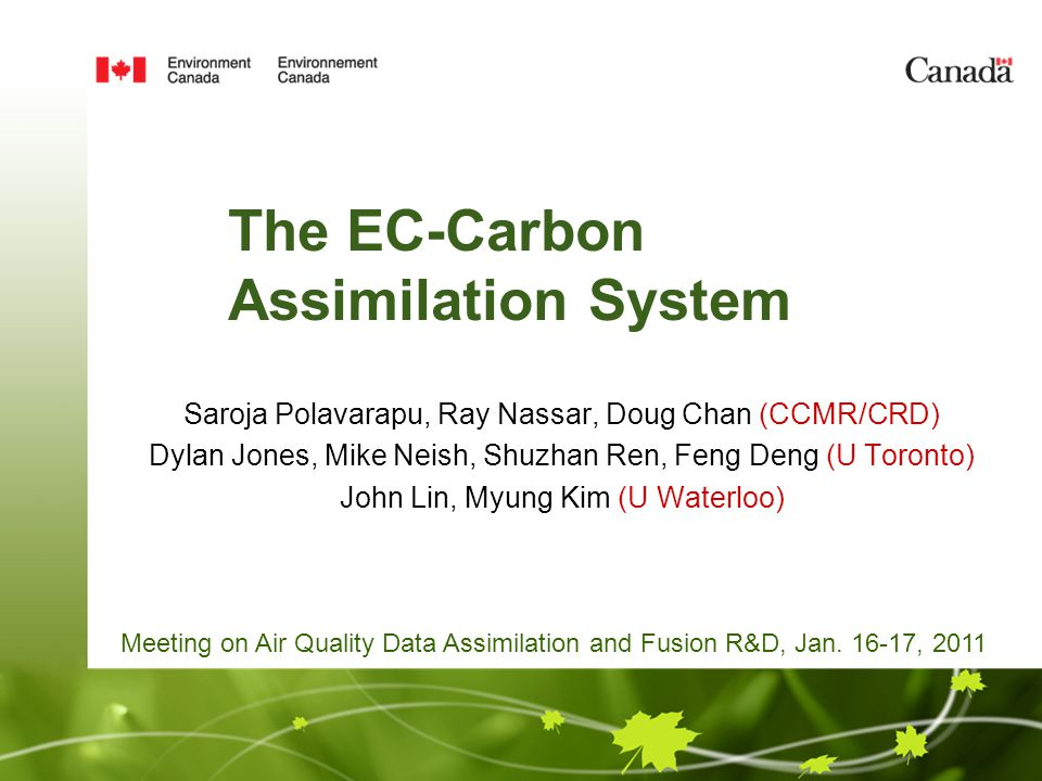 The EC-Carbon Assimilation System