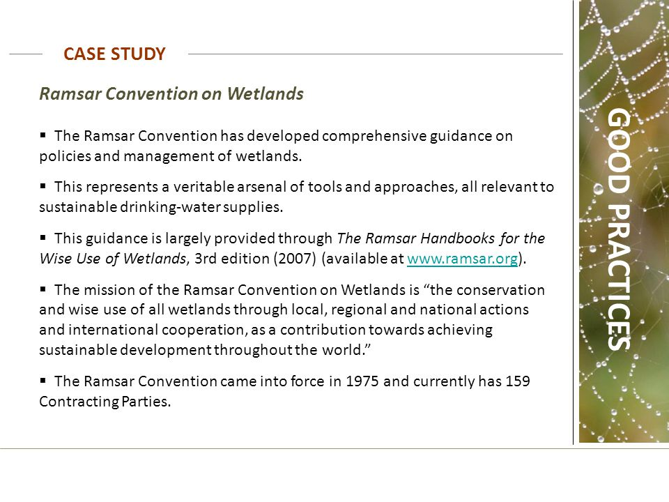 the ramsar convention on wetlands pdf