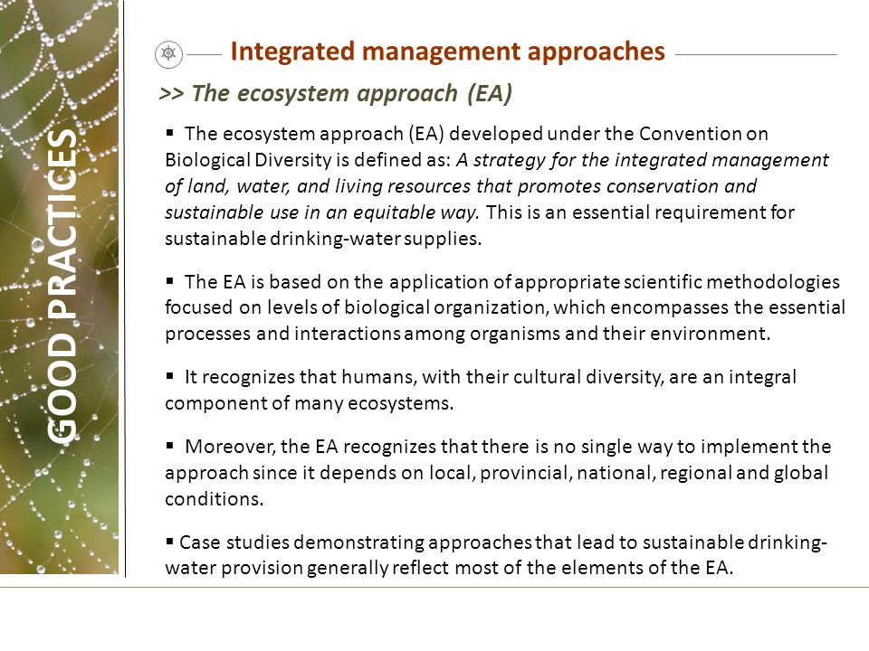 Integrated management approaches