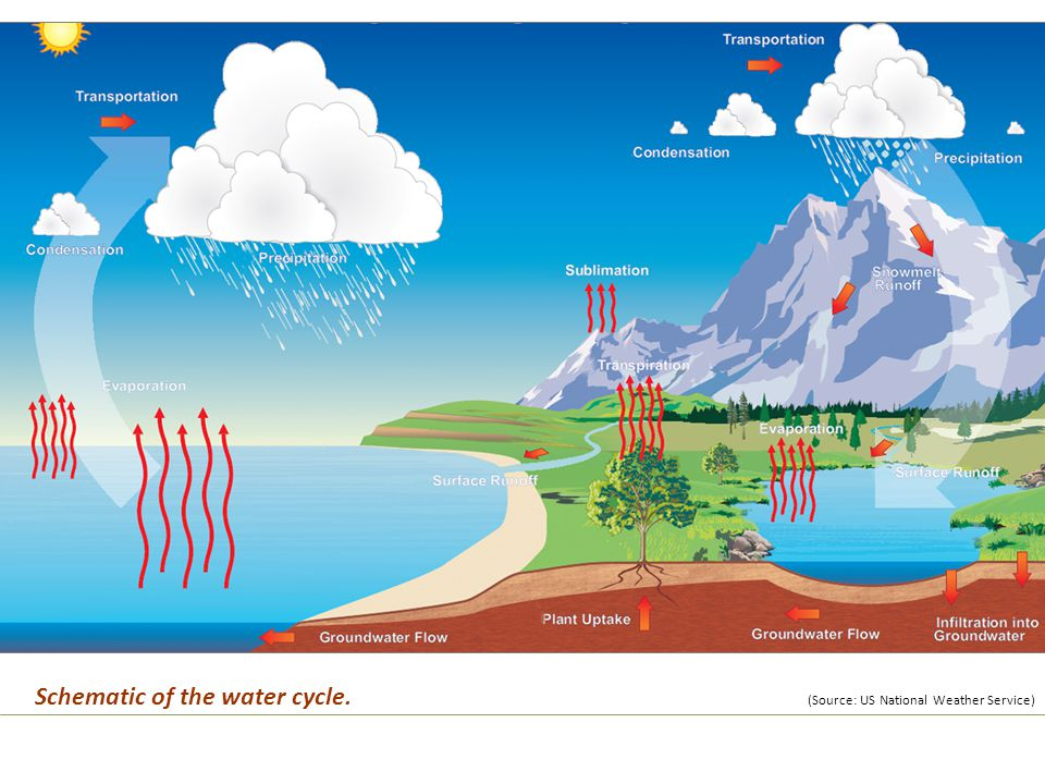 Schematic of the water cycle. (Source: US National Weather Service)