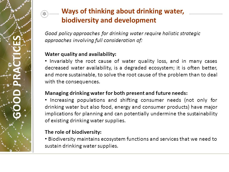 Ways of thinking about drinking water, biodiversity and development