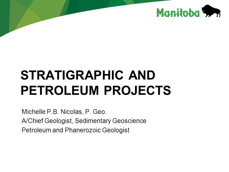 Stratigraphic and Petroleum projects
