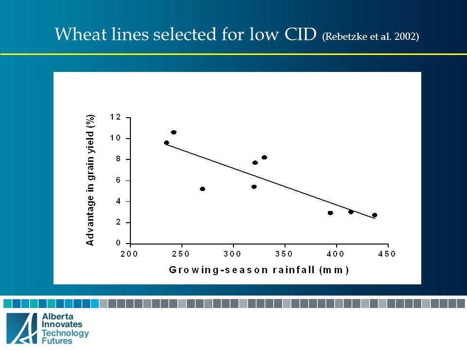 Wheat lines selected for low CID (Rebetzke et al. 2002)