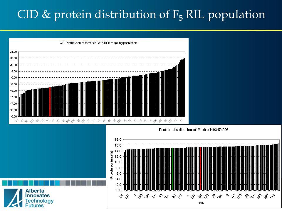 CID & protein distribution of F5 RIL population