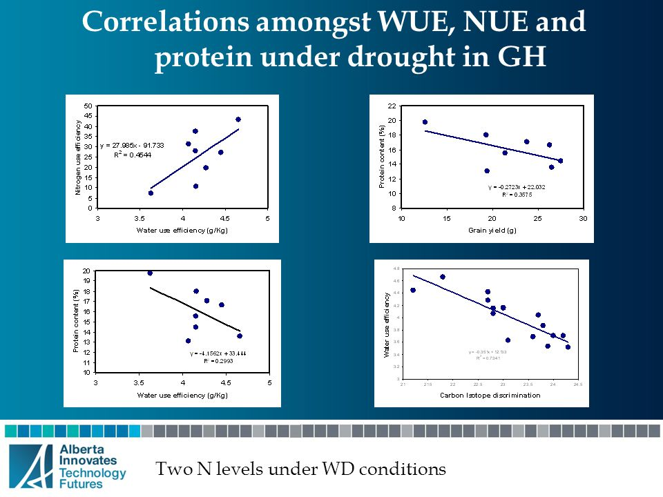 Correlations amongst WUE, NUE and protein under drought in GH