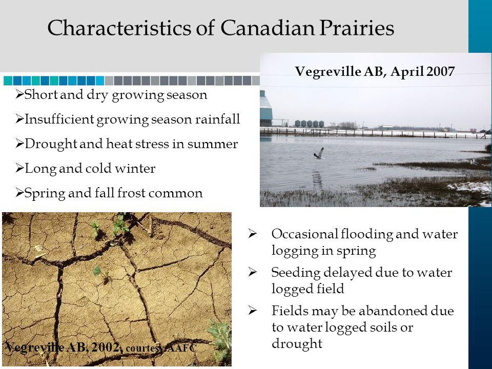 Characteristics of Canadian Prairies