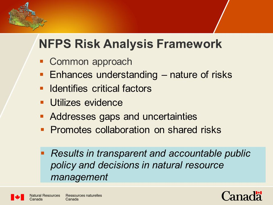 NFPS Risk Analysis Framework