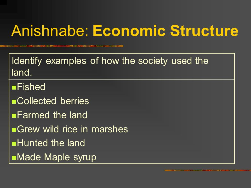 Anishnabe: Economic Structure