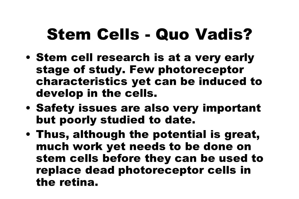 Stem Cells - Quo Vadis