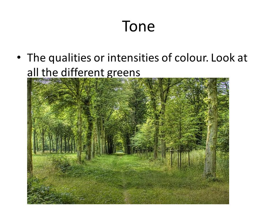 Tone The qualities or intensities of colour. Look at all the different greens