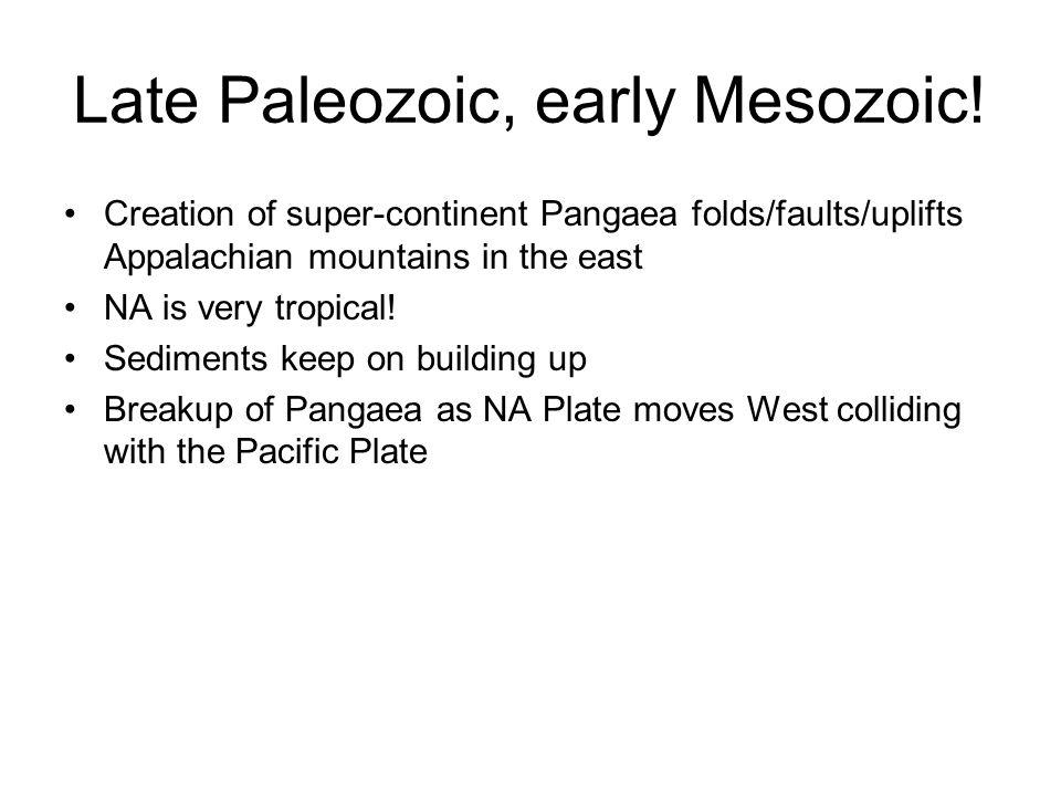 Late Paleozoic, early Mesozoic!