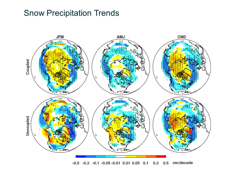 Snow Precipitation Trends