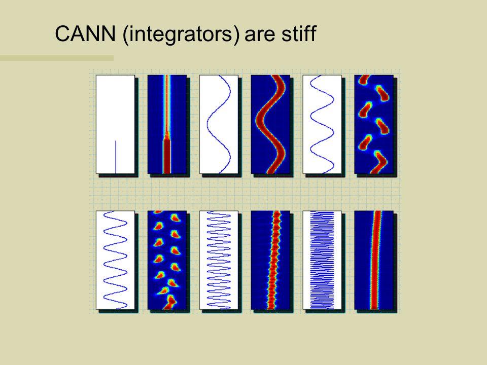 CANN (integrators) are stiff