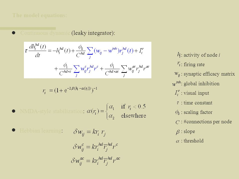 Continuous dynamic (leaky integrator):