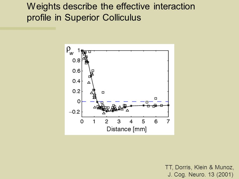 Weights describe the effective interaction profile in Superior Colliculus