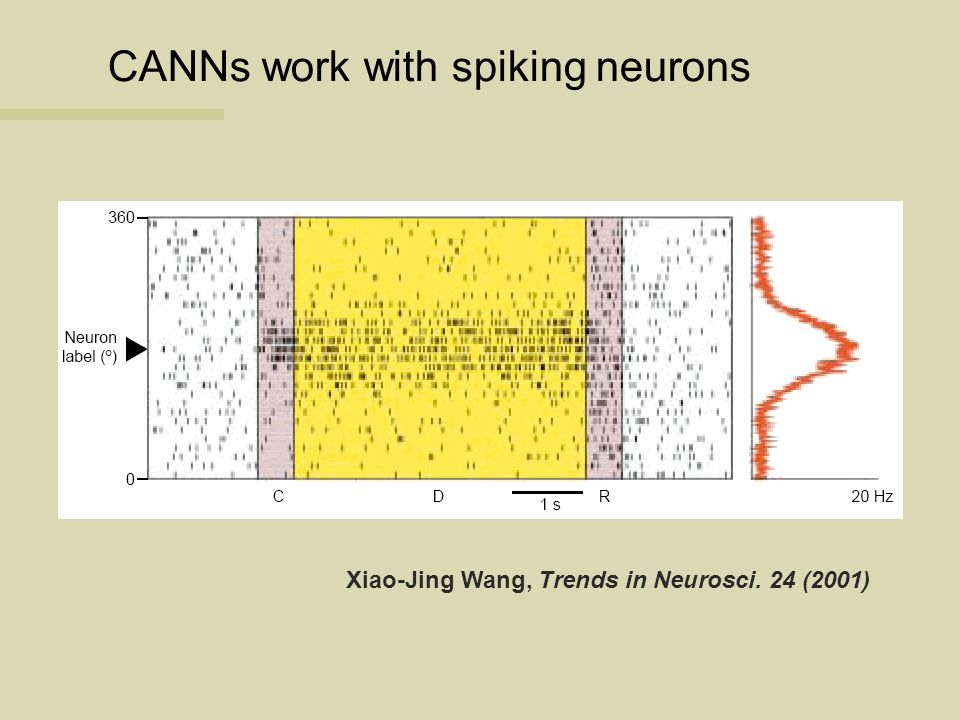 CANNs work with spiking neurons