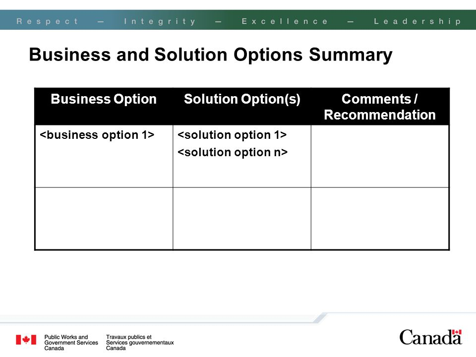Business and Solution Options Summary