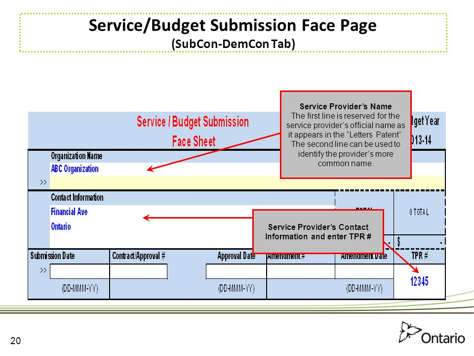 Service/Budget Submission Face Page (SubCon-DemCon Tab)