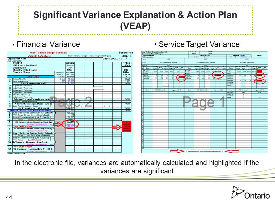 Significant Variance Explanation & Action Plan (VEAP)