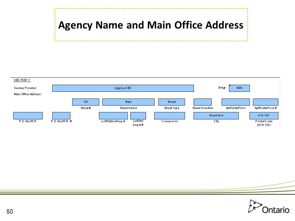 Agency Name and Main Office Address