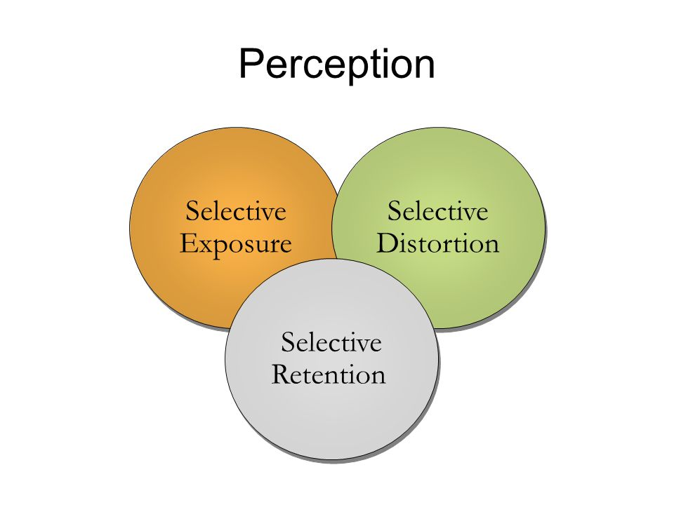 Perception Selective Exposure Selective Distortion Selective Retention