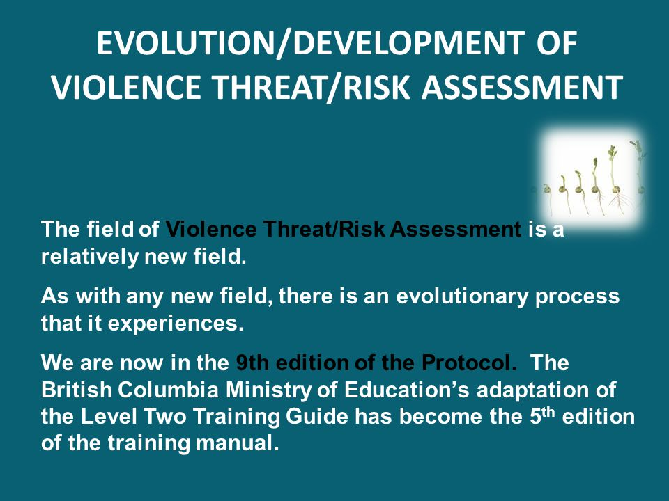 EVOLUTION/DEVELOPMENT OF VIOLENCE THREAT/RISK ASSESSMENT