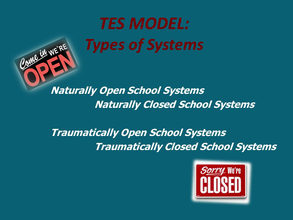 TES Model: Types of Systems