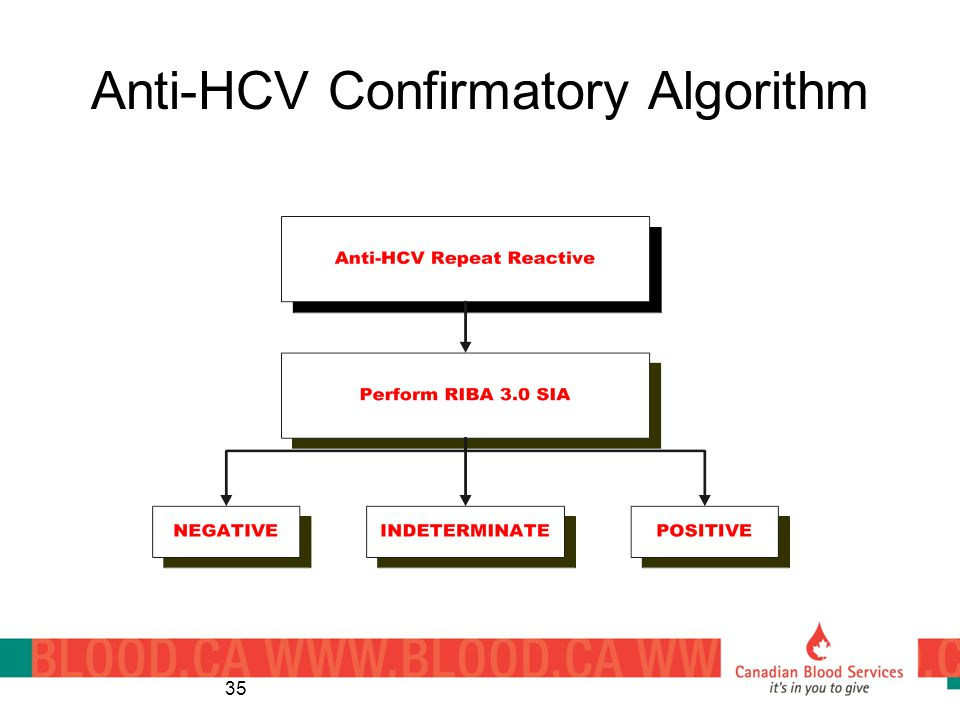 Anti-HCV Confirmatory Algorithm