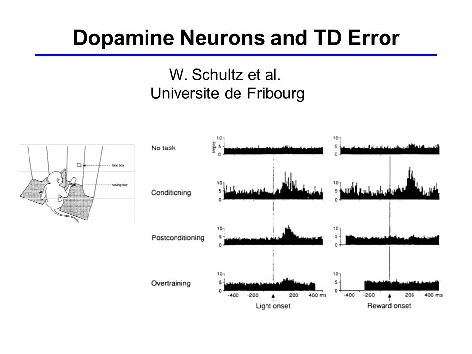 Dopamine Neurons and TD Error